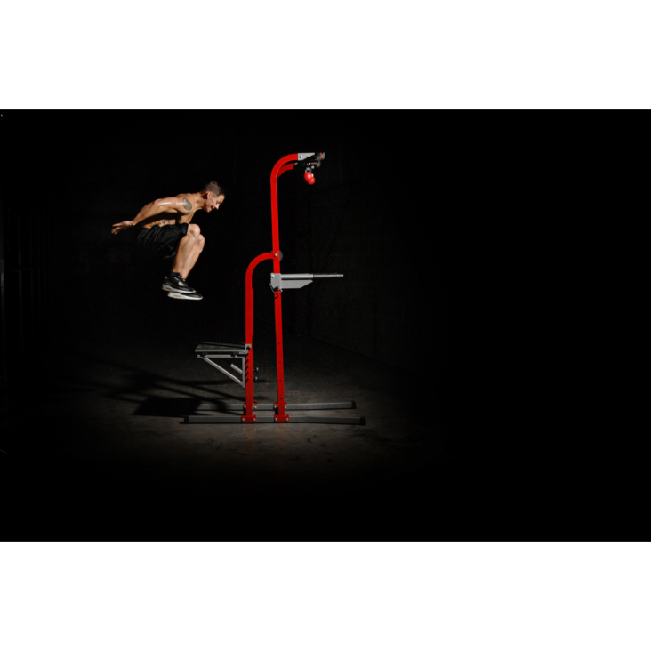 Stamina X Fortress Power Tower at home gym equipment use exercise